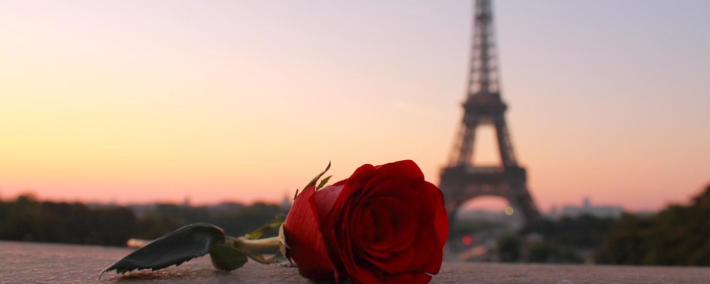 161c80510ec6 Una pedida de película en París